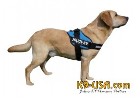 Julius K9-IDC powerharnesses -aquamarine-