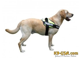 Julius K9-IDC powerharnesses -neon green- mini