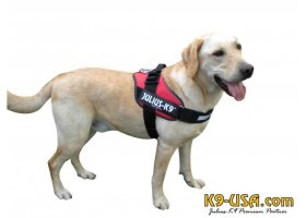 Julius K9-IDC powerharnesses -red-