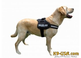 Julius K9 powerharnesses -black-
