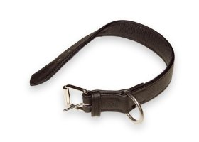 Padded leather collar without handle, 40mm/1.57 in