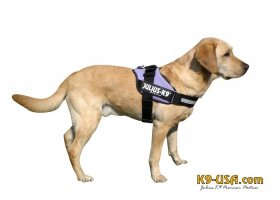 Julius K9-IDC powerharnesses -purple-