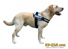 Julius K9-IDC powerharnesses -blue sky- discontinued model!